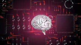 Εγκέφαλος και ψηφιακό κύκλωμα ελεύθερη απεικόνιση δικαιώματος