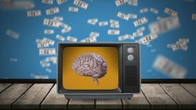 Εγκέφαλος σε μια τηλεοπτική οθόνη ελεύθερη απεικόνιση δικαιώματος