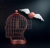εγκέφαλος φτερωτός Στοκ φωτογραφία με δικαίωμα ελεύθερης χρήσης