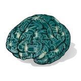 Εγκέφαλος ηλεκτρονικής Στοκ φωτογραφίες με δικαίωμα ελεύθερης χρήσης