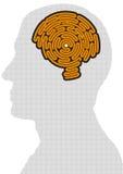 Εγκέφαλος-διαμορφωμένος λαβύρινθος απεικόνιση αποθεμάτων