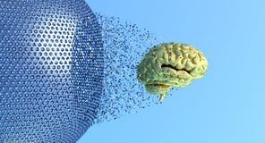 Εγκέφαλος και ένα κλουβί Στοκ εικόνα με δικαίωμα ελεύθερης χρήσης