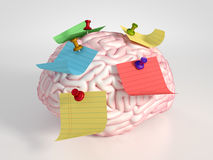 Εγκέφαλος και αυτοκόλλητες ετικέττες Στοκ εικόνες με δικαίωμα ελεύθερης χρήσης