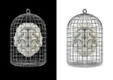 Εγκέφαλος κλουβιών Στοκ φωτογραφίες με δικαίωμα ελεύθερης χρήσης