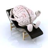 Εγκέφαλος που στηρίζεται σε ένα μόνιππο longue Στοκ Εικόνα