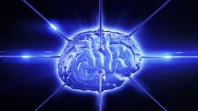 Εγκέφαλος στην ψηφιακή ροή πληροφοριών Περιτυλιγμένη αφηρημένη ζωτικότητα HD 1080 απεικόνιση αποθεμάτων