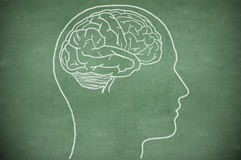 Εγκέφαλος στο κεφάλι στον πίνακα κιμωλίας Στοκ φωτογραφία με δικαίωμα ελεύθερης χρήσης