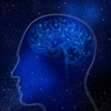 Εγκέφαλος, το κάθισμα της νοημοσύνης Στοκ φωτογραφία με δικαίωμα ελεύθερης χρήσης