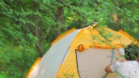 Εγκατάσταση να στρατοπεδεύσει σε ένα δάσος βουνών μέσα απόθεμα βίντεο