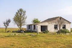 Εγκαταλειμμένα σπίτια Τα παράθυρα λιθοστρώνονται Στο σπίτι βόσκοντας γαλοπούλες Εγκαταλειμμένα χωριά στην Κριμαία στοκ φωτογραφία