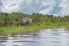 Εγκαταλειμμένη καλύβα κατά μήκος του Αμαζονίου στοκ εικόνες