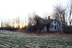 Εγκαταλειμμένη παλαιά ξύλινη καμπίνα αγροικιών που εισβάλλεται με τα δέντρα και τις αμπέλους στοκ εικόνα