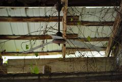 Εγκαταλειμμένη σιταποθήκη Στοκ Εικόνα