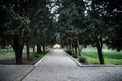 Εγκαταλειμμένη του χωριού οικοδόμηση στο βοτανικό κήπο του Μπακού Κανένας στο πάρκο με τα δέντρα Άνοιξη Στοκ Φωτογραφία
