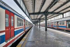 Εγκαταλειμμένος σιδηροδρομικός σταθμός που χαρακτηρίζει ζευκτόν μετάλλων και δύο χρωματισμένα σταματημένα τραίνα Στοκ Εικόνες