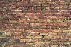 εγκαταλειμμένος τοίχος οικοδόμησης Στοκ Εικόνες
