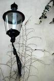εγκαταλειμμένος τοίχο&sigm Στοκ Εικόνα