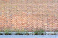 Εγκαταλειμμένος τούβλινος τοίχος με μερικές εγκαταστάσεις και πεζοδρόμιο ως υπόβαθρο οδών στοκ εικόνες με δικαίωμα ελεύθερης χρήσης