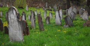 Εγκαταλειμμένο εβραϊκό νεκροταφείο στοκ φωτογραφία με δικαίωμα ελεύθερης χρήσης