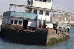 εγκαταλειμμένο σκάφος θάλασσας lions01 Στοκ φωτογραφίες με δικαίωμα ελεύθερης χρήσης