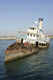 εγκαταλειμμένο σκάφος θάλασσας lions05 Στοκ εικόνα με δικαίωμα ελεύθερης χρήσης