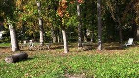 Εγκαταλειμμένο φθινόπωρο πάρκο στο φύλλωμα απόθεμα βίντεο