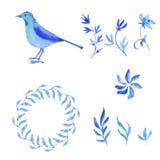 Εγκαταστάσεις και λουλούδια Watercolor doodle Στοκ φωτογραφία με δικαίωμα ελεύθερης χρήσης