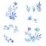 Εγκαταστάσεις και λουλούδια Watercolor doodle Στοκ Εικόνες
