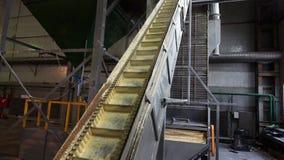 Εγκαταστάσεις καταστημάτων για την παραγωγή των σβόλων από τη βιομάζα Βιολογικά καύσιμα στοκ φωτογραφίες με δικαίωμα ελεύθερης χρήσης