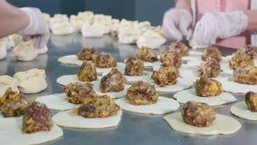 Εγκαταστάσεις κρέατος Κινηματογράφηση σε πρώτο πλάνο που πυροβολείται της παραγωγής χεριών μπουλεττών κρέατος Σφαίρες κρέατος Scu φιλμ μικρού μήκους