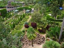 Εγκαταστάσεις πάρκων, πάρκο της Ταϊλάνδης, Στοκ φωτογραφίες με δικαίωμα ελεύθερης χρήσης