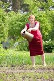 Εγκαταστάσεις ποτίσματος γυναικών στον κήπο στοκ φωτογραφία