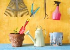 Εγκαταστάσεις σε ένα δοχείο λουλουδιών με τα εργαλεία κηπουρικής Στοκ Φωτογραφία