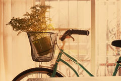 Εγκαταστάσεις σε ένα ποδήλατο Στοκ φωτογραφία με δικαίωμα ελεύθερης χρήσης