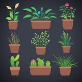 Εγκαταστάσεις σπιτιών, λουλούδια στα δοχεία Διανυσματικά επίπεδα εικονίδια Στοκ εικόνες με δικαίωμα ελεύθερης χρήσης