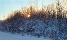 Εγκαταστάσεις στο χιόνι Στοκ εικόνα με δικαίωμα ελεύθερης χρήσης