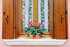 Εγκαταστάσεις στο windowsill ενός σπιτιού σε Burano, Βενετία Στοκ Φωτογραφία