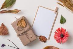 Εγκαταστάσεις φθινοπώρου, δώρο τεχνών και κάρτα Στοκ φωτογραφία με δικαίωμα ελεύθερης χρήσης