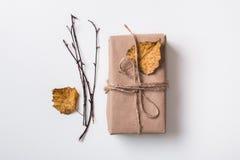 Εγκαταστάσεις δώρων και φθινοπώρου τεχνών Στοκ εικόνα με δικαίωμα ελεύθερης χρήσης