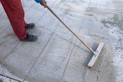 Εγκαταστήστε την πολυμερή άμμο με 2 στοκ εικόνες με δικαίωμα ελεύθερης χρήσης