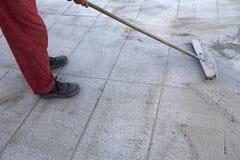 Εγκαταστήστε την πολυμερή άμμο με στοκ φωτογραφία με δικαίωμα ελεύθερης χρήσης