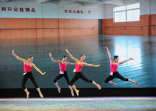 Εγκατα:λείπω-βασικό εκπαιδευτικό μάθημα χορού Στοκ Εικόνες