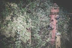 Εγκαταλειμμένες θέσεις - βέλη Στοκ Εικόνες