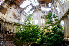 Εγκαταλειμμένες παλαιές βιομηχανικές εγκαταστάσεις Στοκ Φωτογραφία