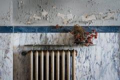 Εγκαταλειμμένη θερμάστρα Στοκ φωτογραφίες με δικαίωμα ελεύθερης χρήσης