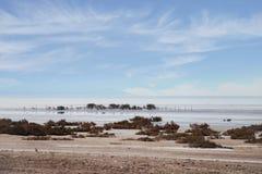 Εγκαταλειμμένη παραλία, ηλιόλουστη ημέρα Στοκ εικόνα με δικαίωμα ελεύθερης χρήσης
