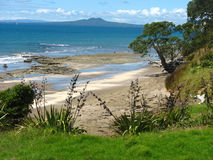 Εγκαταλειμμένη παραλία Νέα Ζηλανδία Στοκ Εικόνες