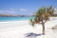 Εγκαταλειμμένη παραλία στοκ φωτογραφίες με δικαίωμα ελεύθερης χρήσης