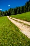 Εγκαταλειμμένος δρόμος αμμοχάλικου μέσω της δασικός-καλυμμένης κοιλάδας στην Αυστρία Στοκ φωτογραφίες με δικαίωμα ελεύθερης χρήσης