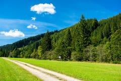 Εγκαταλειμμένος δρόμος αμμοχάλικου μέσω της δασικός-καλυμμένης κοιλάδας στην Αυστρία Στοκ Εικόνα